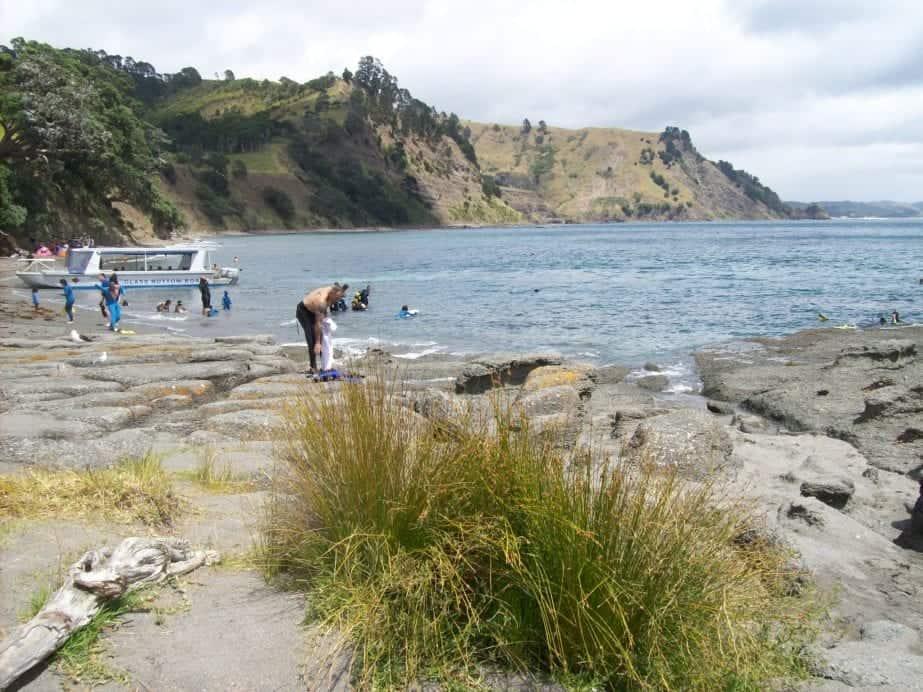 Visiting Goat Island Marine Reserve, New Zealand