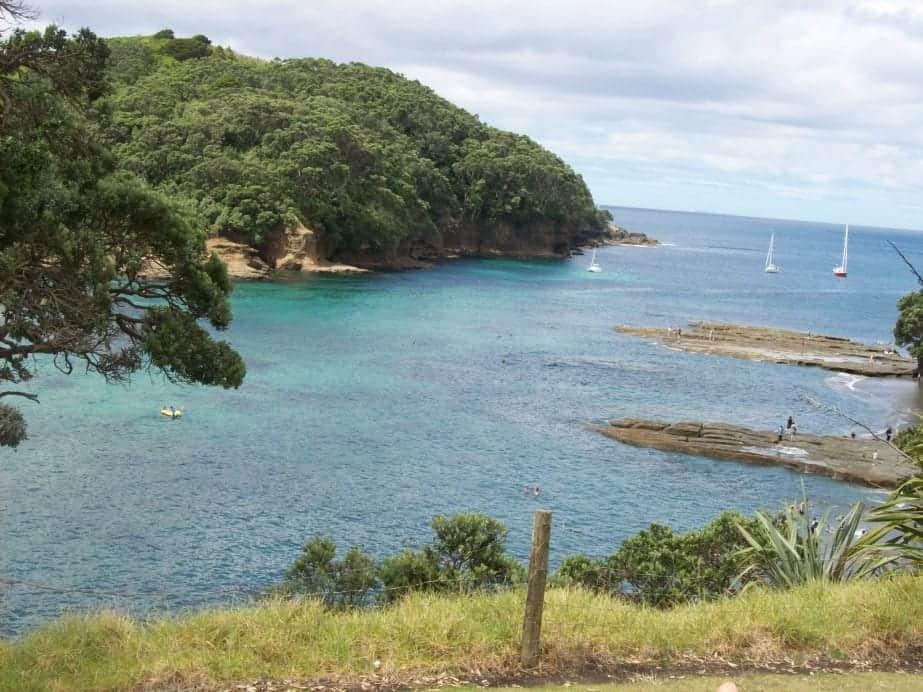 A Beautiful Day Out At Goat Island New Zealand Anita