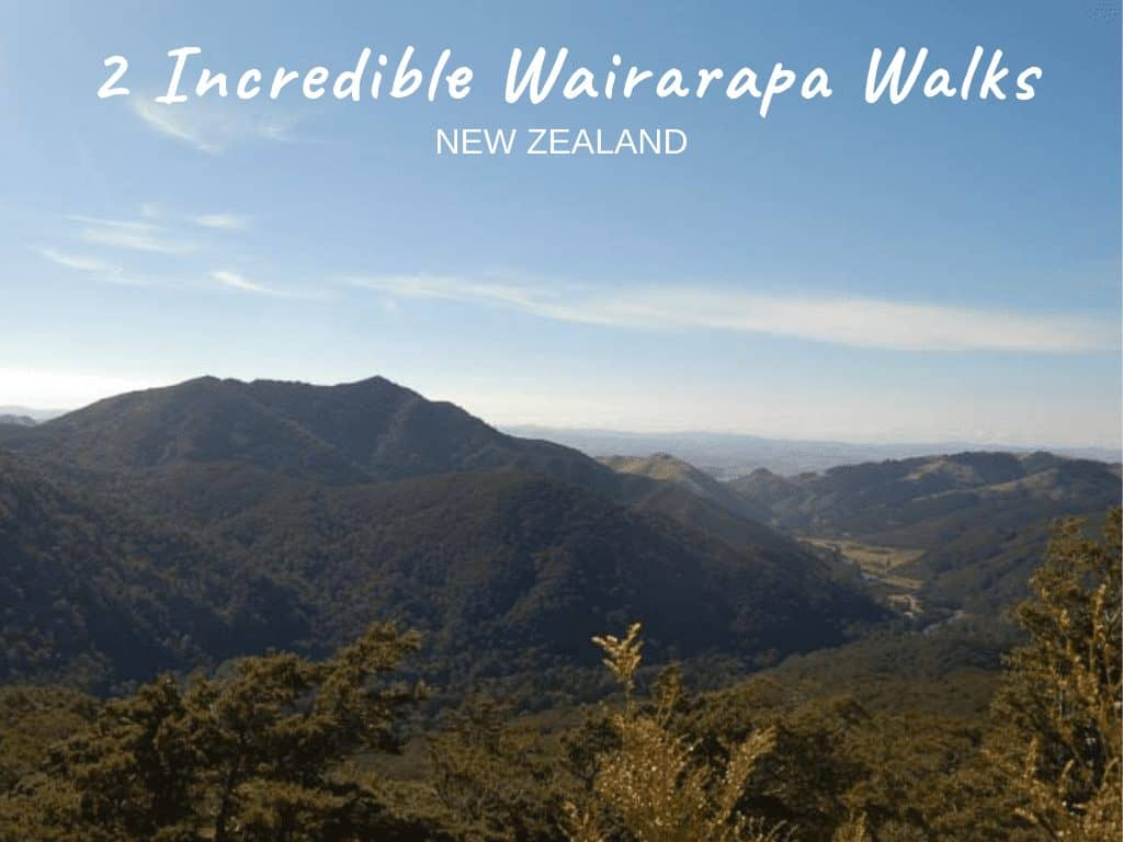 2 Wairarapa Walks with Incredible Views [New Zealand]