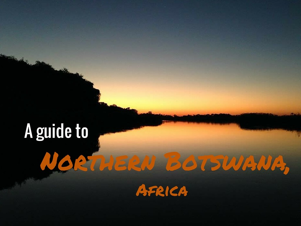 A Guide To Northern Botswana, Africa