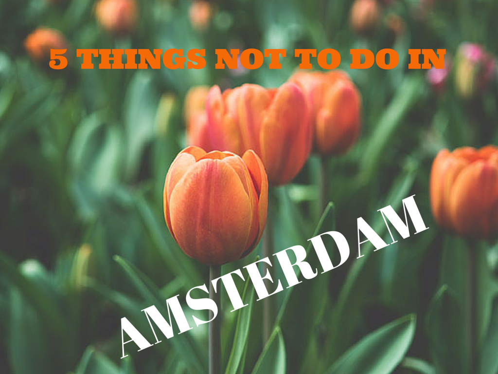 5 Things to not do in Amsterdam www.anitahendrieka.com