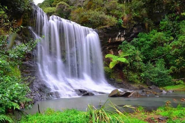 Mokoroa Falls (9) e