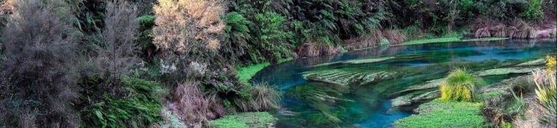 PHOTO | Hamilton Waikato