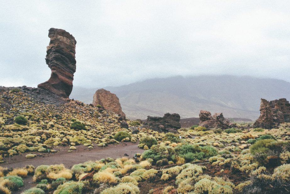 5 Reasons Why You Should Visit Tenerife