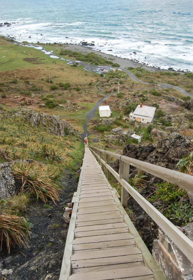 An interesting way to see the hidden local spots in the Wairarapa, NZ