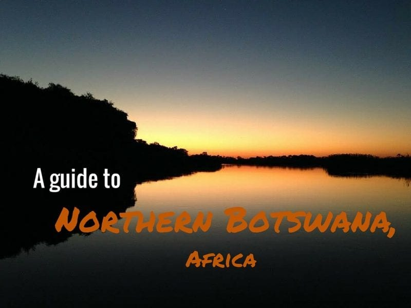 a-guide-to-northern-botswana