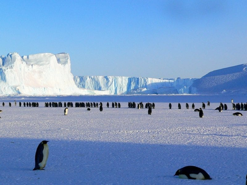 Top 8 Spookiest Things Spotted In and Near Antarctica