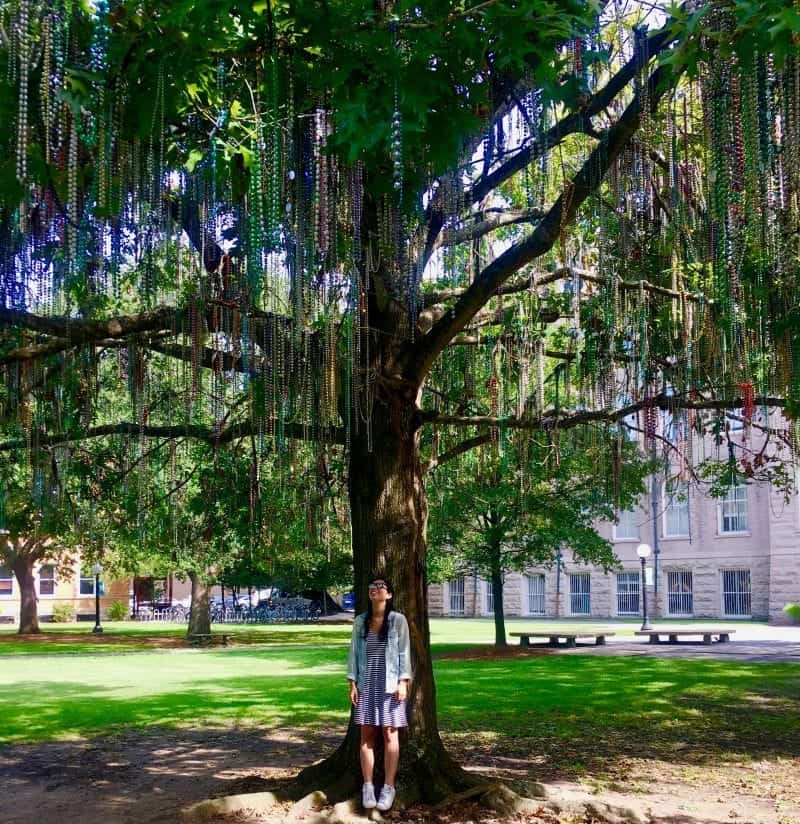 New Orleans Attractions: Things to do in New Orleans