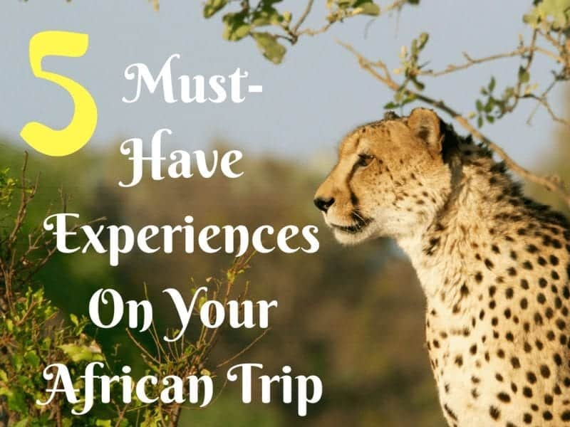 5 Must-Have Experiences On Your African Trip