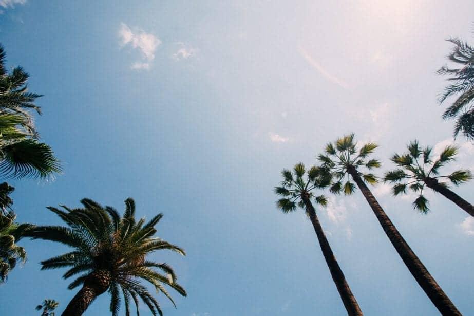Top Hostels in Barcelona You Must Stay In