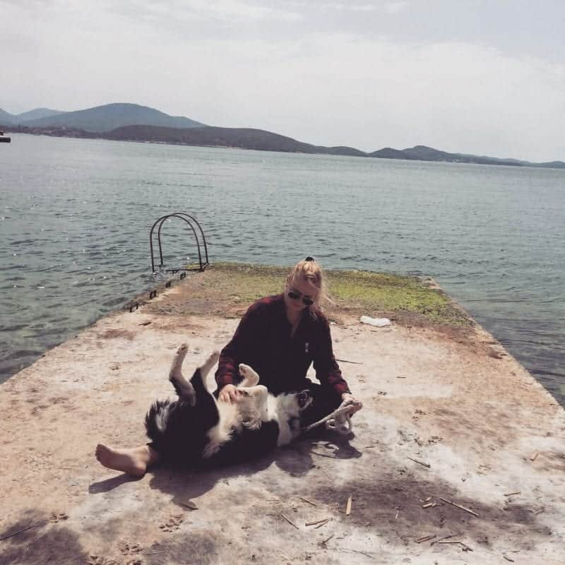 I Adopted a Street Dog in Albania
