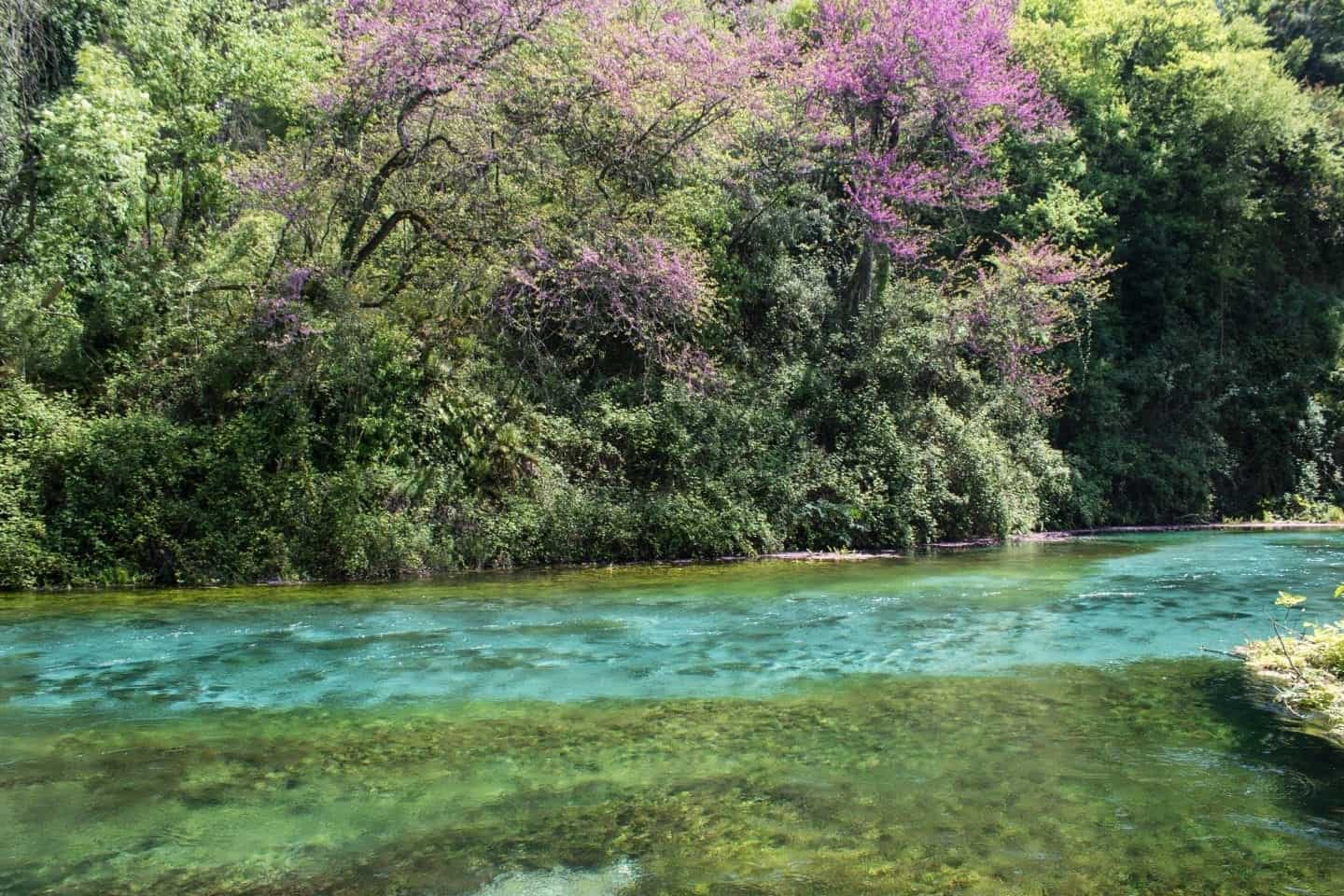 If you are visiting Saranda then you should take a couple of hours and discover The Blue Eye.  This natural phenomenon is a spring that is a constant 10 degrees, even at the heat of the summer.