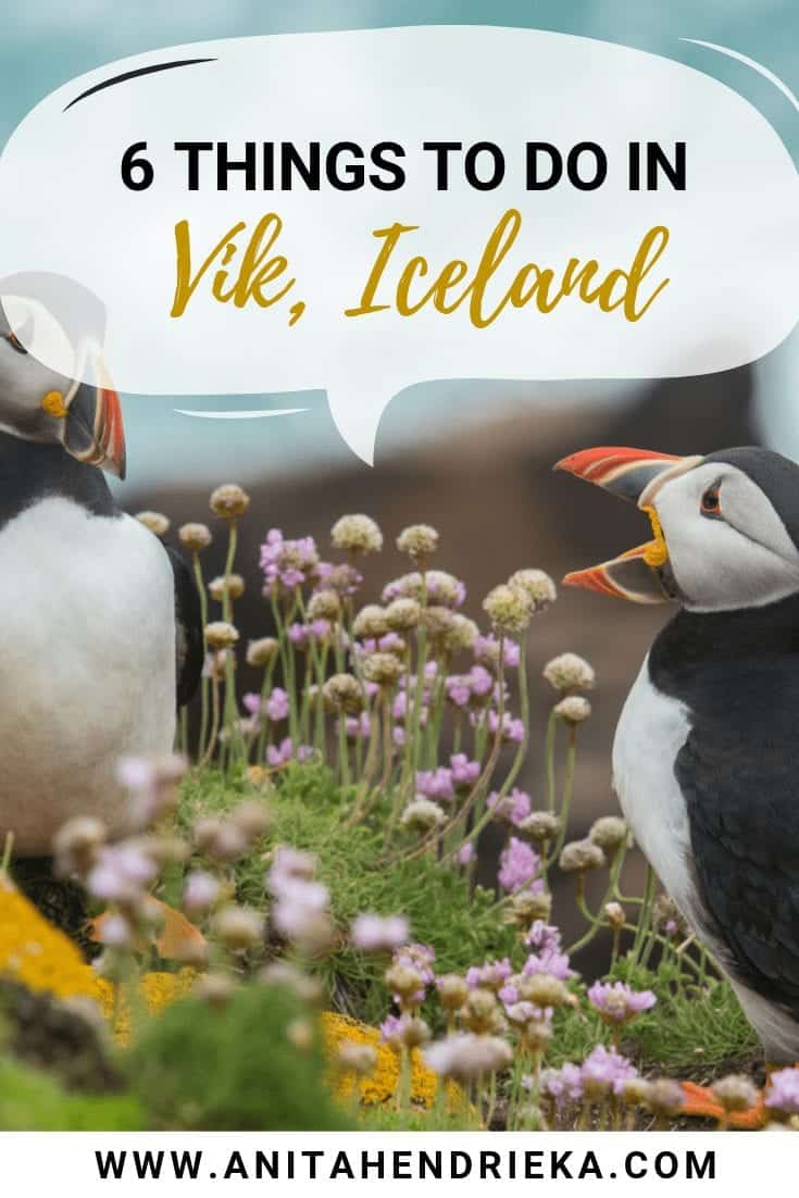 6 Unique Things to do in Vik, Iceland